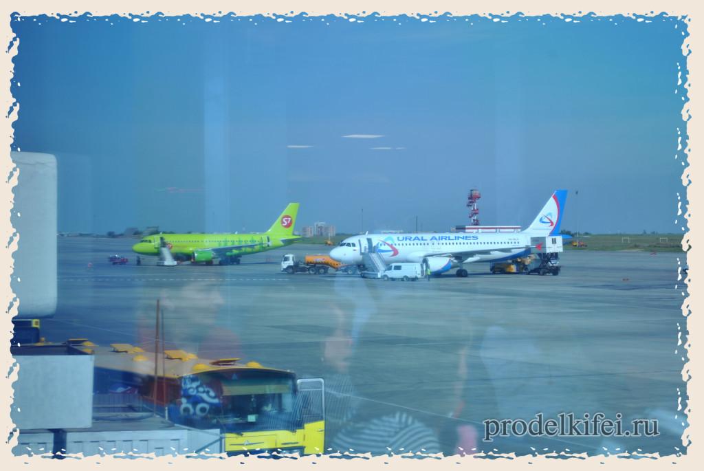 самолет на котором мы полетели в Римини