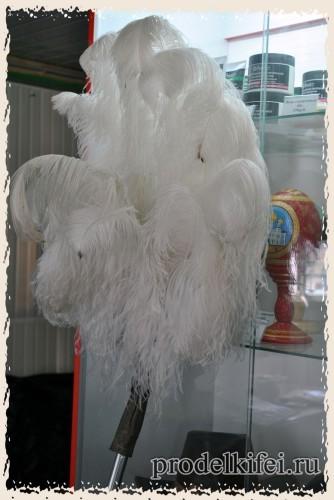 перья страуса самца