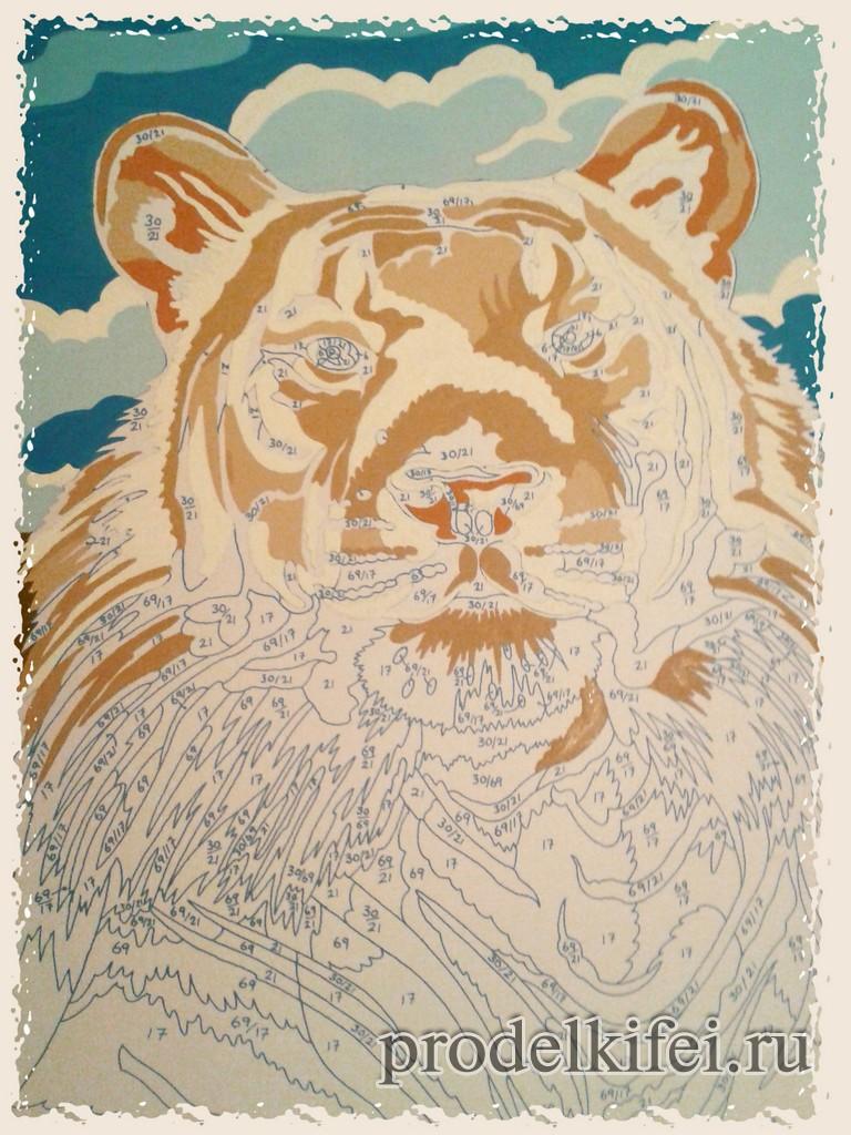 начинаем рисовать тигра