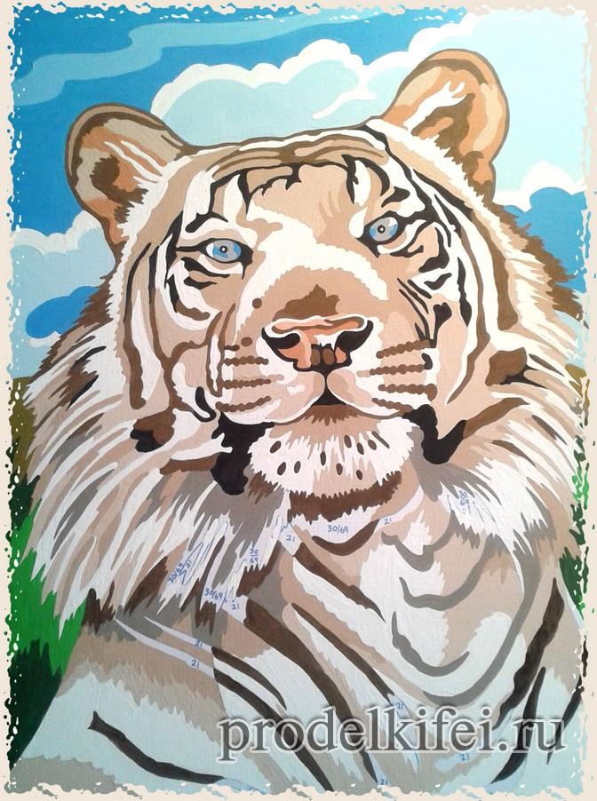тигр красками по номерам