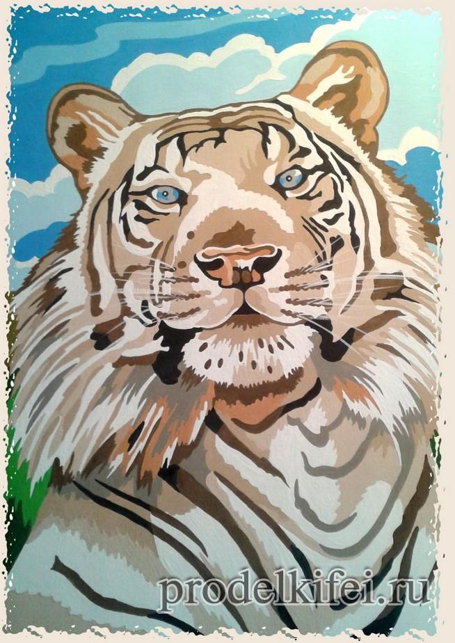 Тигр по номерам