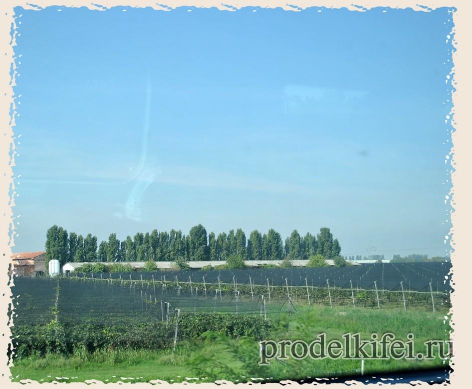 вид из окна поезда на поля в Италии