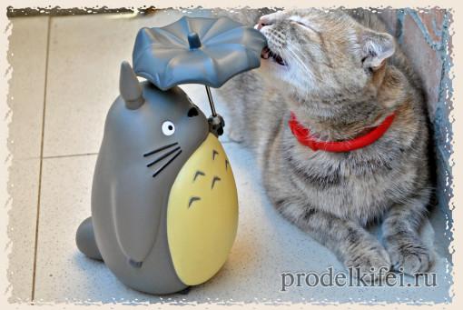 тоторо и кошка